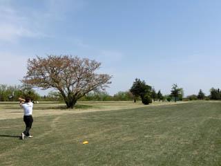 golf.971