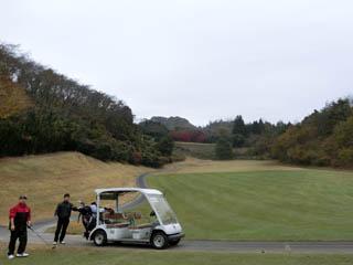 golf.994