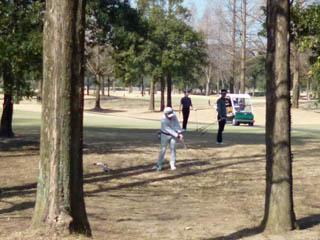 golf.a056