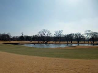 golf.a061