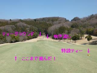 golf.a077