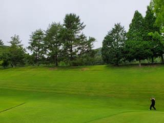 golf.a117