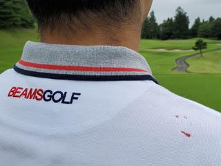 golf.a118