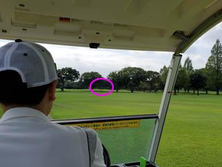 golf.a130