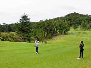 golf.a141