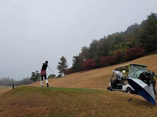 golf.a155
