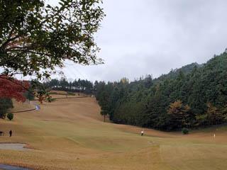 golf.a156