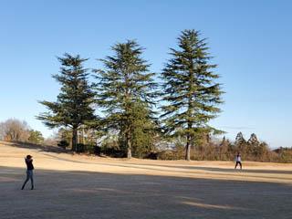 golf.a163